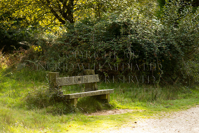 IWM9002 
