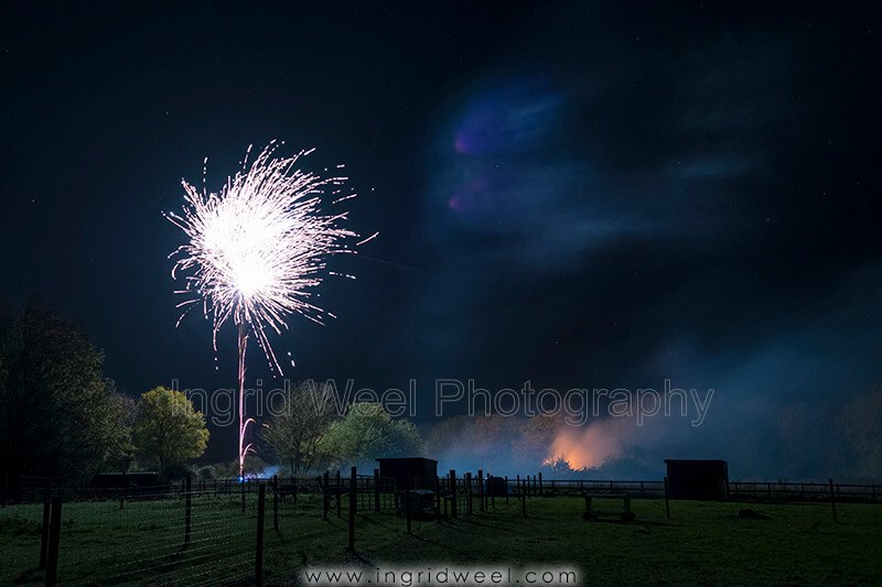 IWM3891 