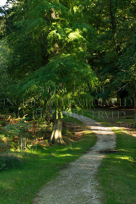 IWM9023 