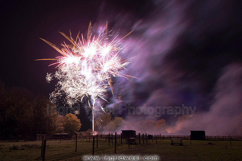 IWM3906 